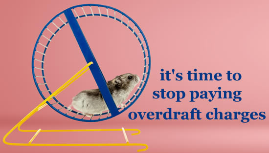 Hamster running round in a wheel. Does your bank account feel like this? Is it time to get off the wheel and stop paying overdraft charges?